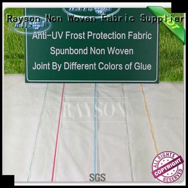 Rayson Non Woven Fabric customized garden weed membrane supplier for ground cover