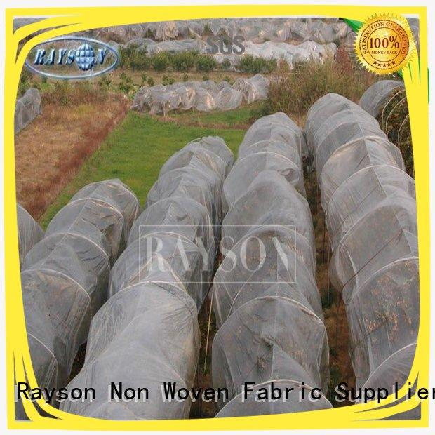 34 gsm UV 3% White Color Polypropylene Frost Protection Fleece Used For Agricultural Crop Cover