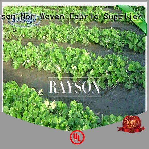 mesh landscape tarps years for ground cover Rayson Non Woven Fabric