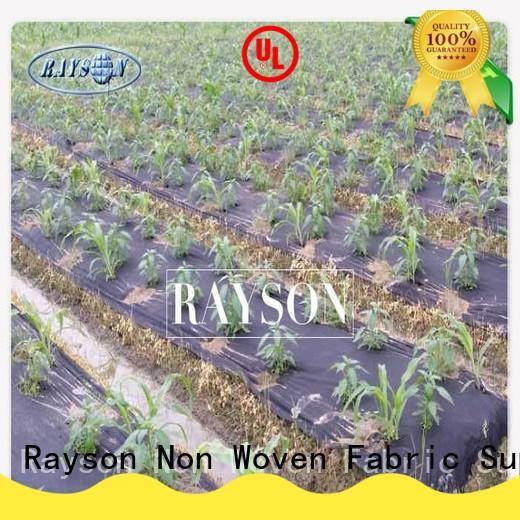 preen landscape fabric moist for root control bags Rayson Non Woven Fabric