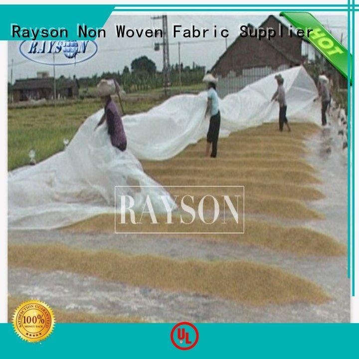 customized green garden fleece series for weed control Rayson Non Woven Fabric