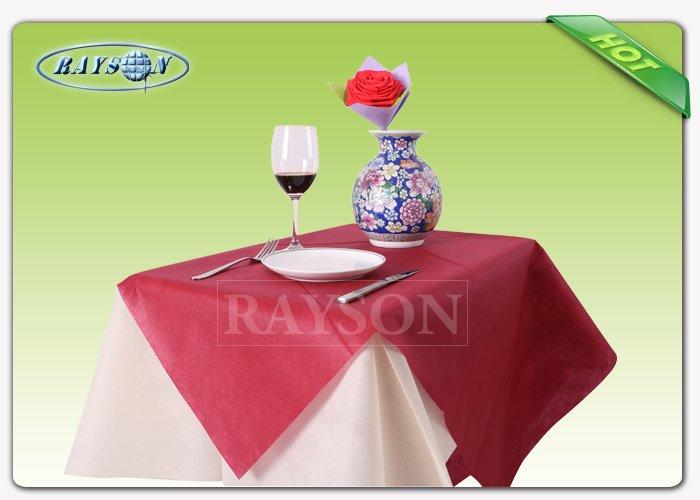 machine wholesale for outerdoor Rayson Non Woven Fabric