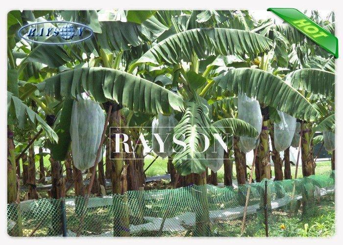 UV Stabilizer Fruit Tree Netting Bags for Banana / Grape / Mango PPSB Non Woven