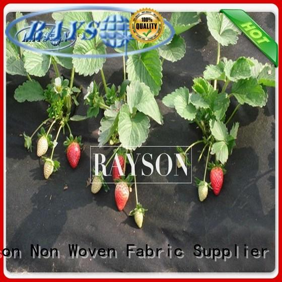 anti uv flower bed landscape fabric wholesale for root control bags Rayson Non Woven Fabric