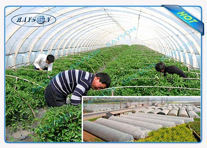 agriculturenonwoven24.jpg