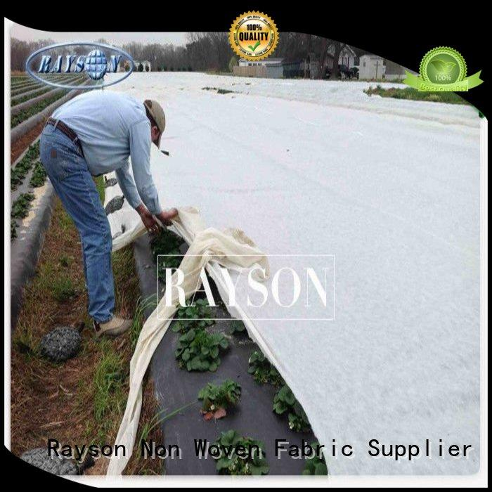Rayson Non Woven Fabric high density flower garden weed control wholesale for ground cover