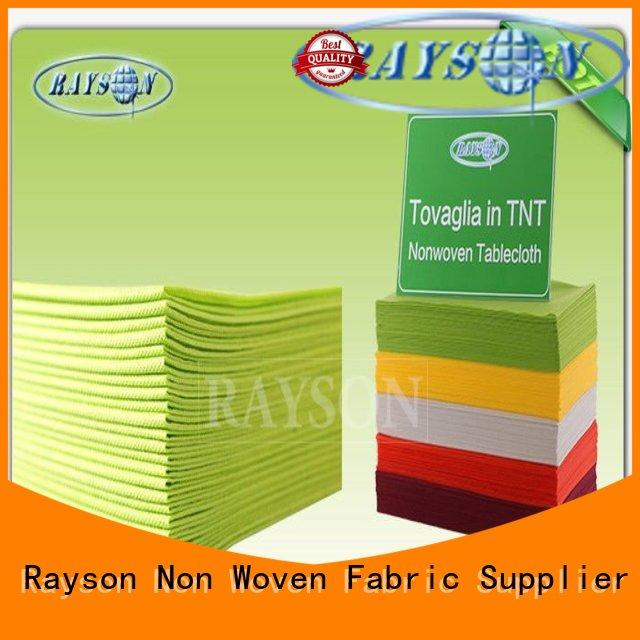 Rayson Non Woven Fabric high quality banquet for picnic
