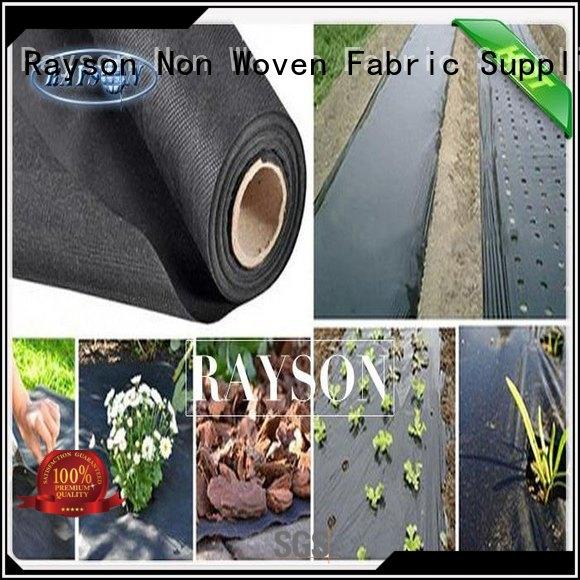 show black weed control fabric lanscaping for ground cover Rayson Non Woven Fabric