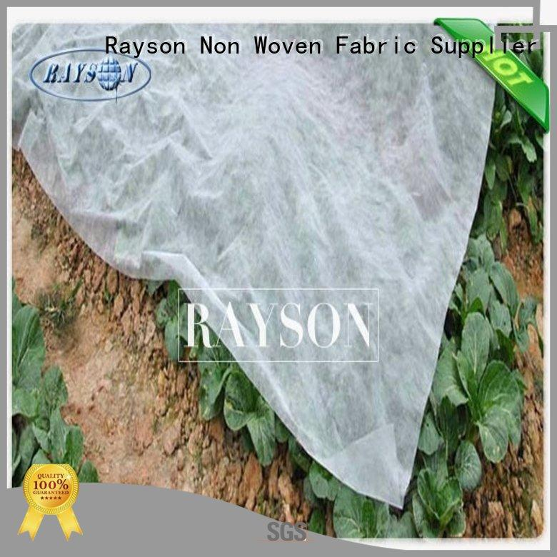 Rayson Non Woven Fabric high quality ground cover weed control seasame for root control bags
