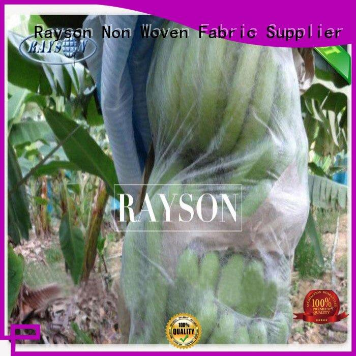 agriculture apple fruit bags friendly for pear and vegetable Rayson Non Woven Fabric