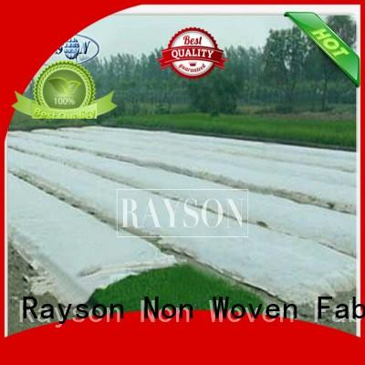 Rayson Non Woven Fabric online lanscaping fabric supplier for ground cover