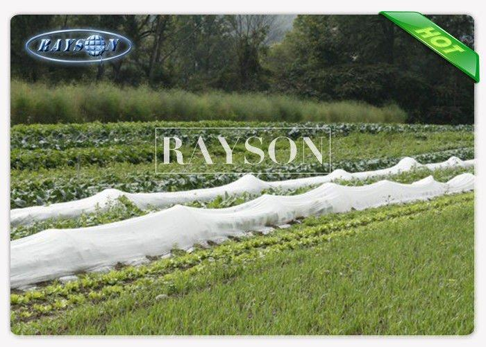 UV Ttreated PP Spunbond Frost Protection Fleece Biodegradable Landscape Fleece 40gram