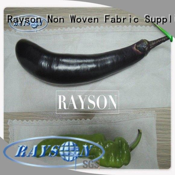 Rayson Non Woven Fabric white color fruit exclusion bags supplier for banana