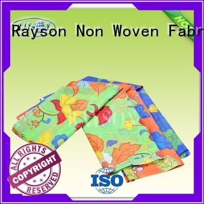 bottom woven vs nonwoven fabric 17gram Rayson Non Woven Fabric company