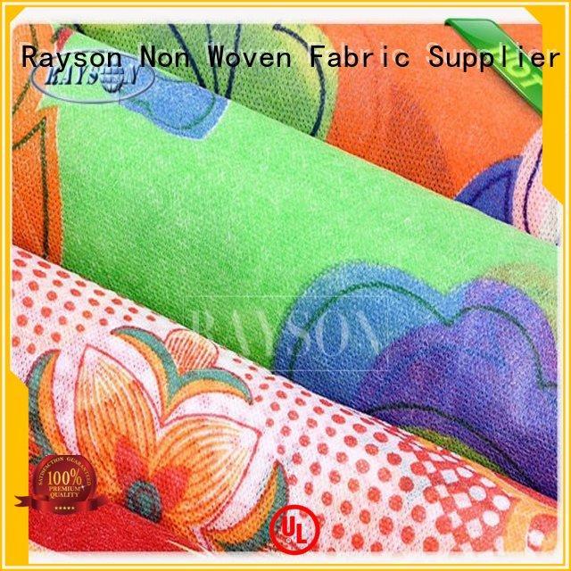 Custom no various spunbond nonwoven Rayson Non Woven Fabric tote