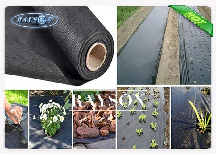 Light Weight Roll Packing Garden Weed Control Fabric / Non Woven Mulch For Covering Crops