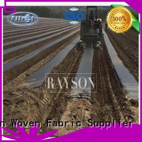 weed control material protection for root control bags Rayson Non Woven Fabric