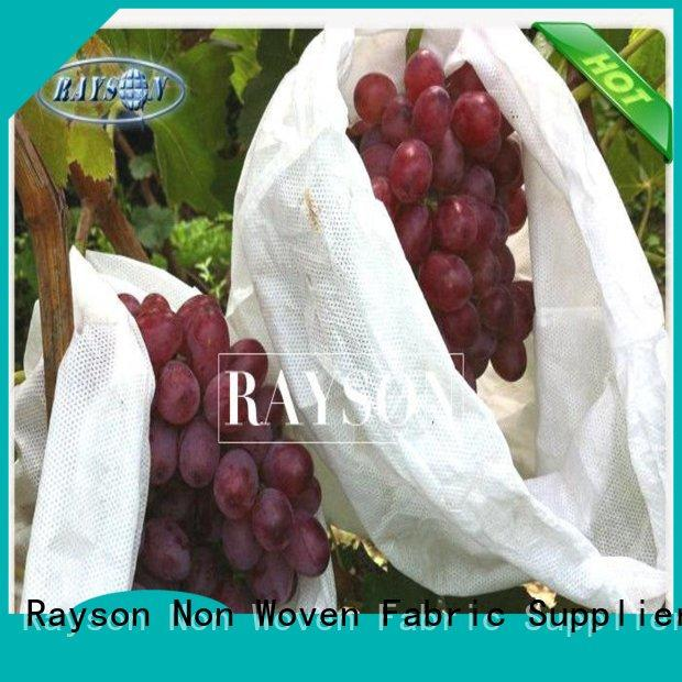 Rayson Non Woven Fabric recyclable fruit fly protection manufacturer for pear and vegetable