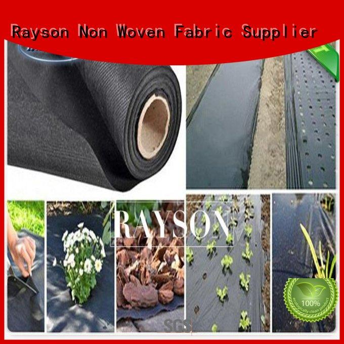 join white weed control fabric wholesale for seed blankets Rayson Non Woven Fabric