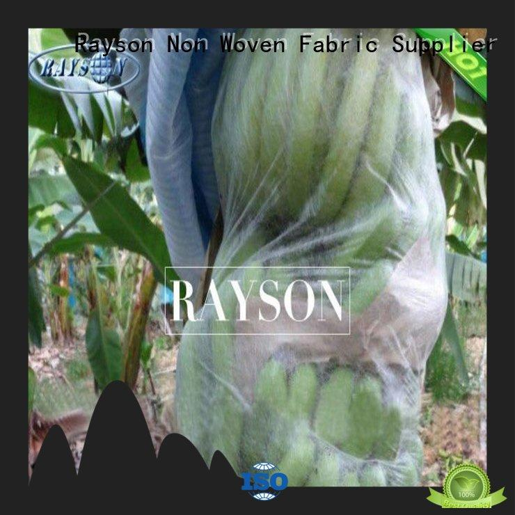 Rayson Non Woven Fabric high quality bags to cover fruit on trees witer for home furnishings