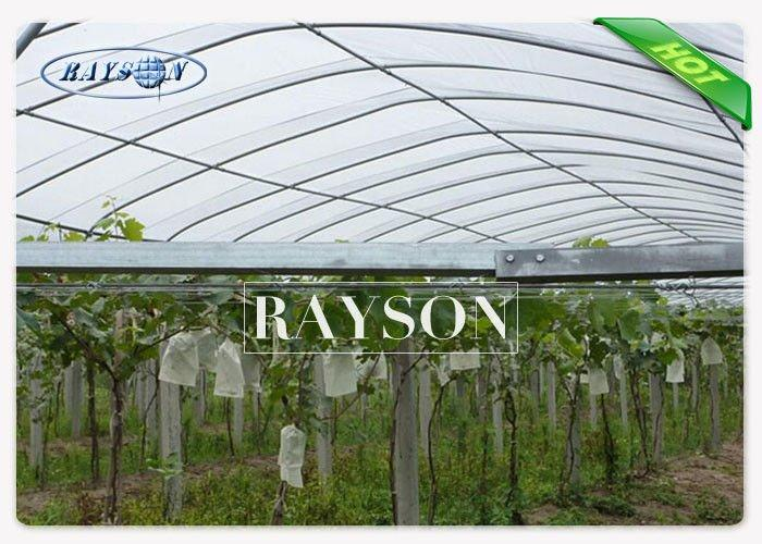 UV 1% Breathable 34g Garden Weed Control Fabric Non Woven Crop Cover