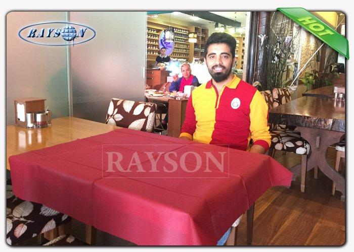Rayson Non Woven Fabric high quality wholesale for home-1