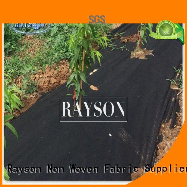 Rayson Non Woven Fabric crop garden fabric liner supplier for ground cover