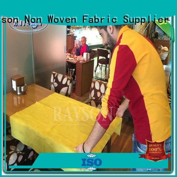 Rayson Non Woven Fabric high quality wholesale for home