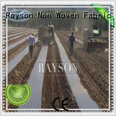Rayson Non Woven Fabric high density landscape fabric for sale benefit for seed blankets