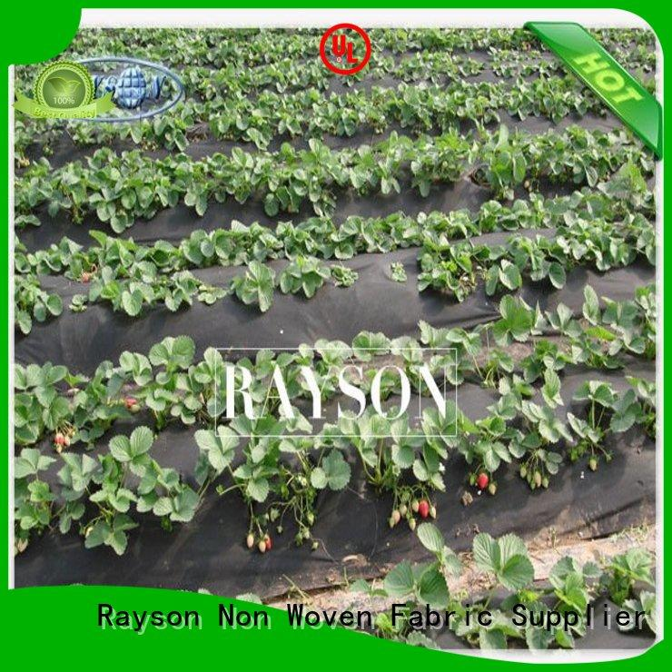Rayson Non Woven Fabric stabilization weed control mat series for ground cover