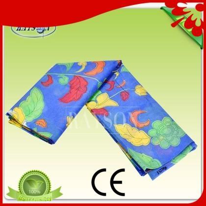 mulch spunbond nonwoven made Rayson Non Woven Fabric company