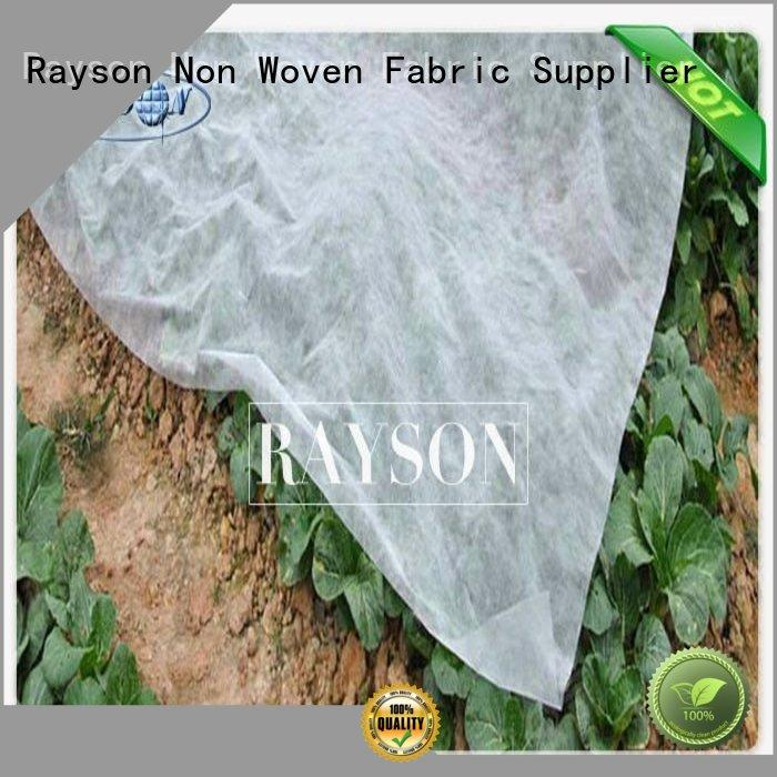 Rayson Non Woven Fabric high quality where to buy geotextile fabric series for ground cover