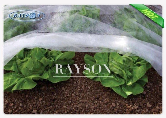 White 100% Virgin Polypropylene Plant Protection Fleece For Ground Cover