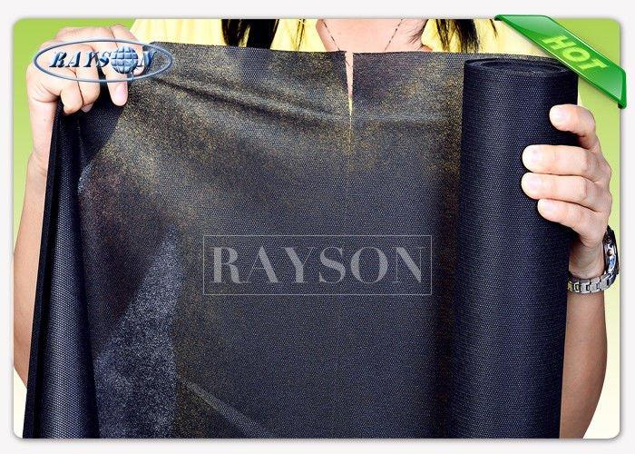 Rayson Non Woven Fabric party supplier for picnic