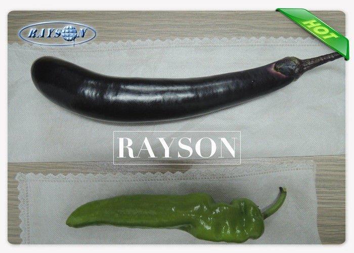 20GSM Pest Control Spunbond Non Woven Vegetable Garden Cover Non Toxic / Biodegradable