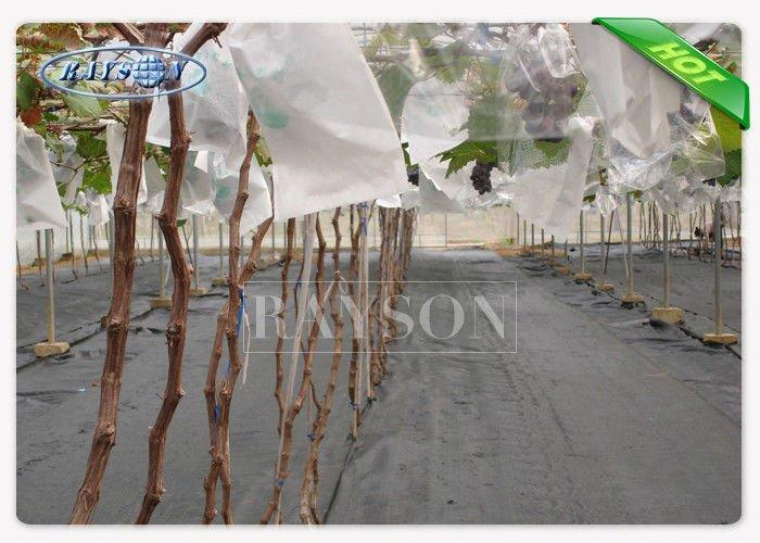 Agriculture Industry Use Non Woven Fruit Protection Bag Keep From Worms Bitting