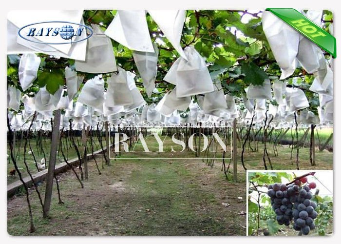 Anti Insect Pest Non Woven Fruit Protection Netting  Blue / White Color