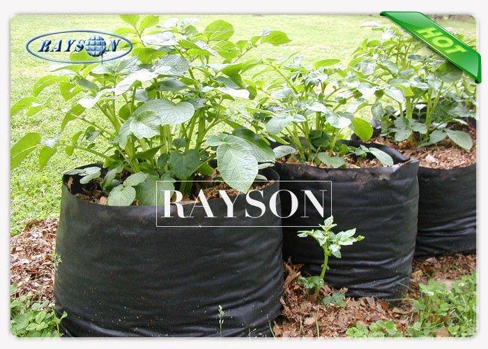 Heat Seal Black Non Woven Cultivating  Bag In PPNW For Grow Seedlings Planting Bags