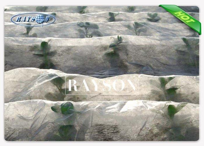 Garden Fleece Fabric Hight Strength Fleece Protection for Plants In 100% Polypropylene Raw Material