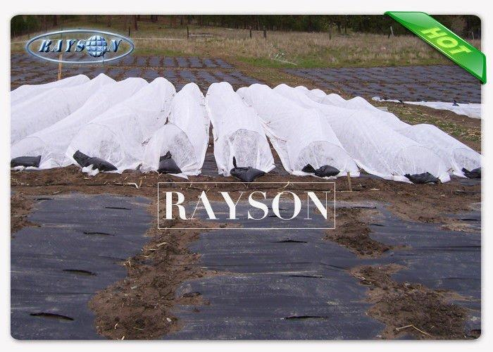 large plant membrane wholesale for root control bags Rayson Non Woven Fabric