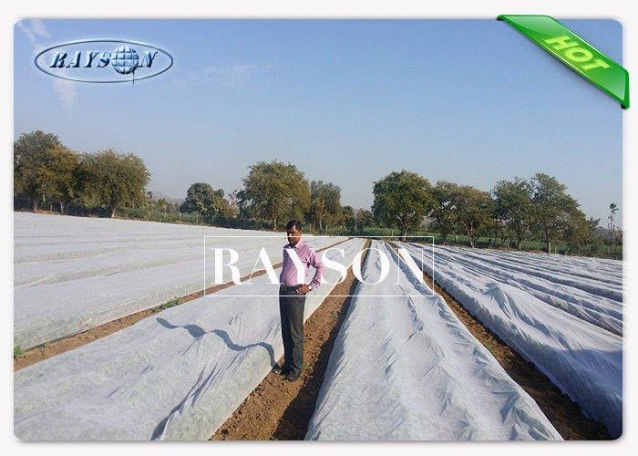 weed control liner test for root control bags Rayson Non Woven Fabric