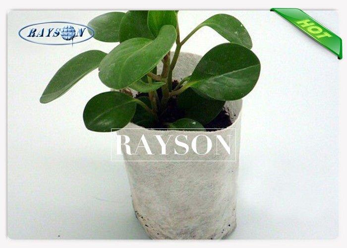 40 gsm Small Nursery Grow White Color Non Woven Plant Bag Used For Home Garden