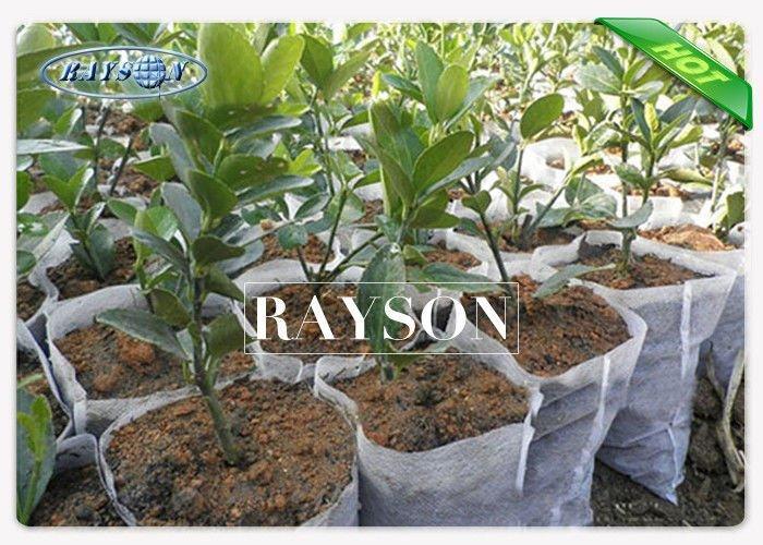 Tear-resistant PP Spunbond Non Woven Grow Bags for Plants Heat Sealing