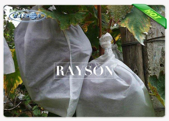 Air and Sunlight Permeable Protective Netting for Fruit Trees 100% Virgin PP Composition