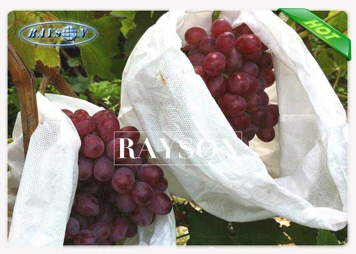 Anti-bacteria and Mothproof Non Woven Nursery Plant Bags for Fruit Covering