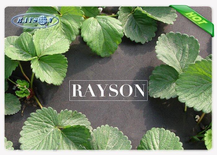 Black Weed Control Mat Garden Weed Control Fabric 100% Virgin Polypropylene