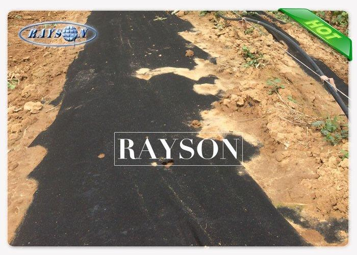 safe black cloth to prevent weeds cover for seed blankets Rayson Non Woven Fabric