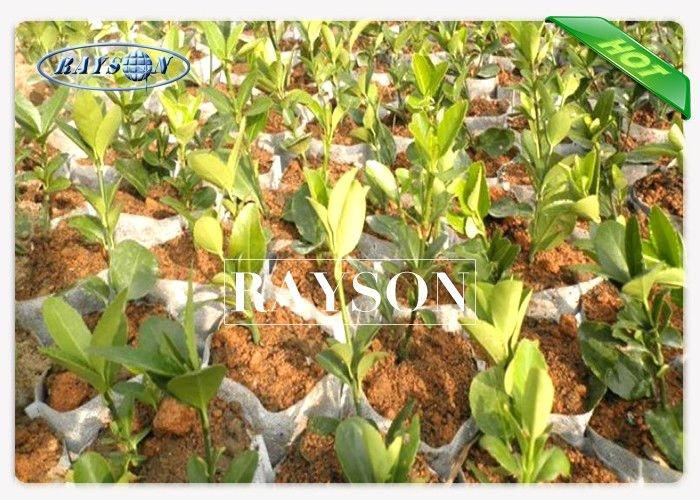 17-50 GSM  UV Treatment Garden Weed Control Fabric for Vegetable / Fruit Farm