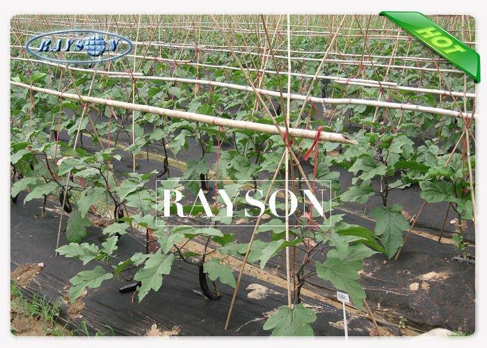 Water Permeable Weed-proof Landscape Fabric with Anti-aging , Non Woven Landscape Textiles