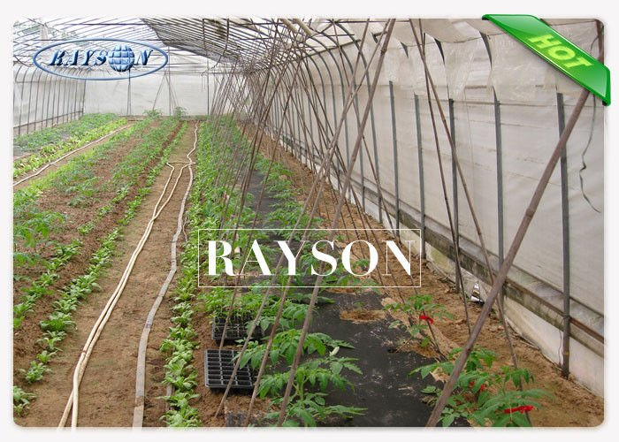 Wide - Width Garden Weed Control Fabric In PP Non Woven Fabric With UV Resistance